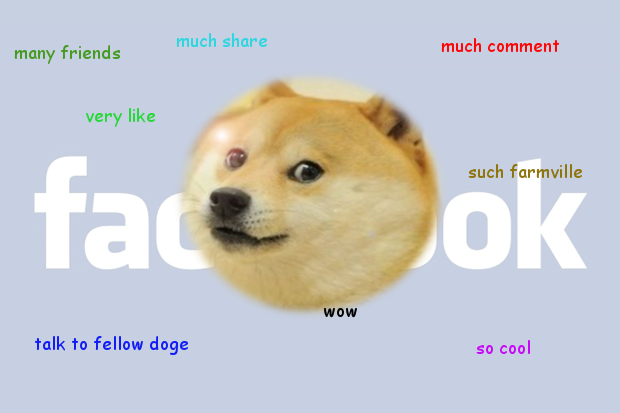 Doge can Facebook.