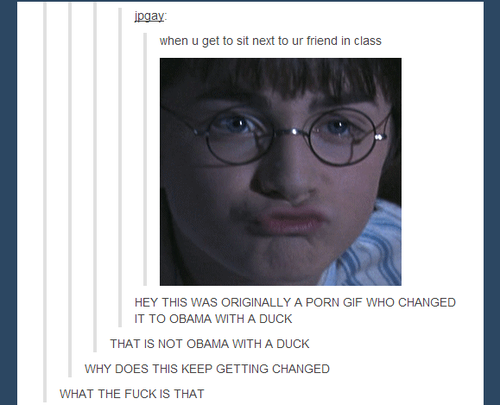 HarryPotter! Tumblr
