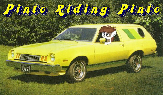 Pinto Riding Pinto