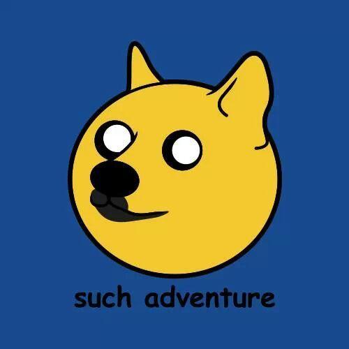 Doge Time