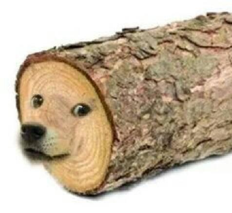 Can't have tree without bark.