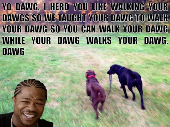 Dawg Walking Your Dawg