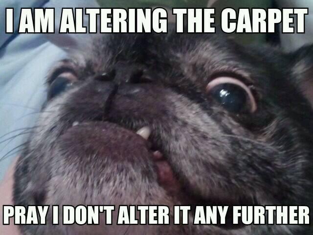 I am altering the carpet