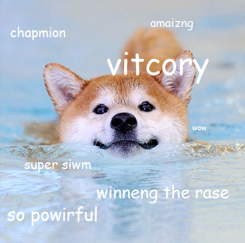 Swimming Doge