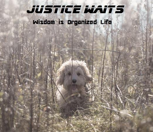Justice Waits - Wisdom is organized life