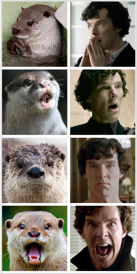 Cumberbatch thread. 1ca