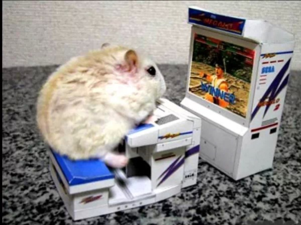 Googled 'Best Gaming Mouse' was not disappointed