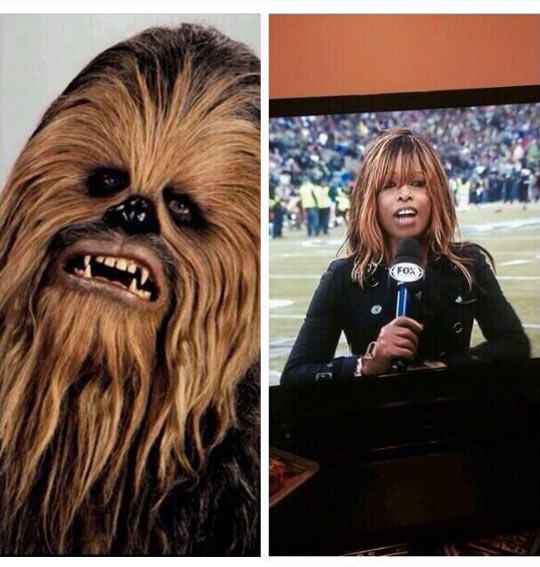Chewbacca's Long Lost Sister