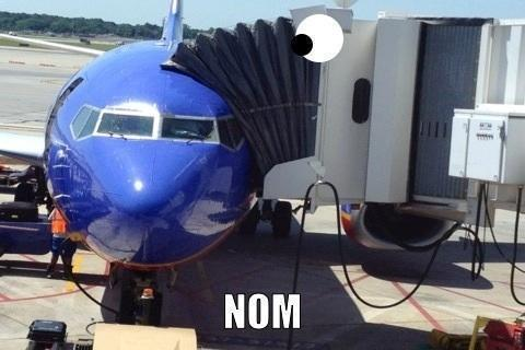 I Eat The Plane