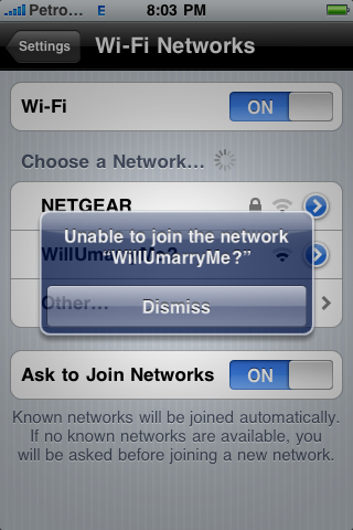 Will You Marry Me Wifi