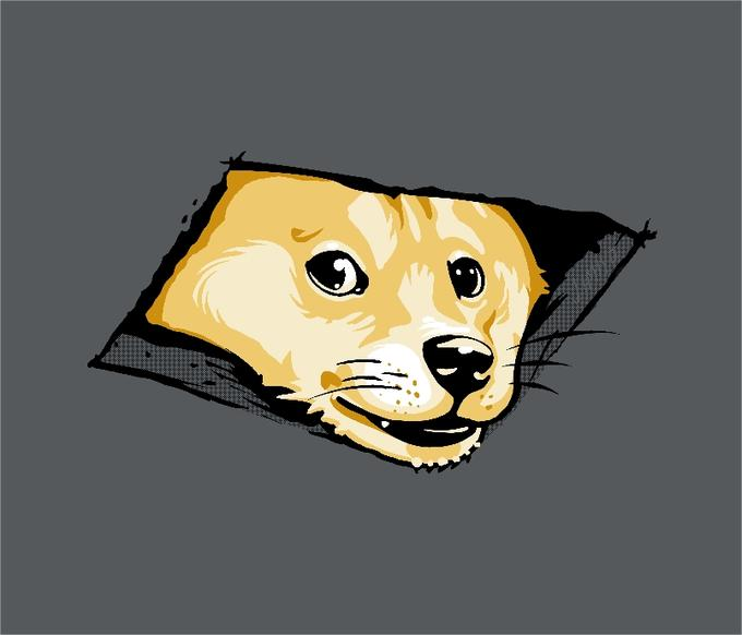 Ceiling Doge