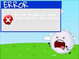 I lost my mudkipz