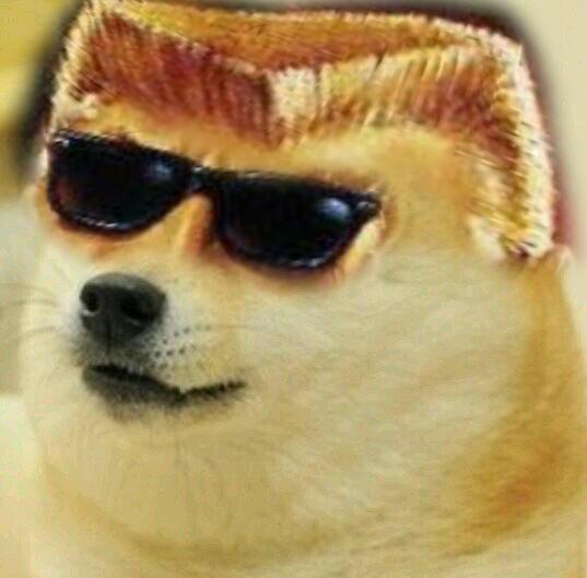 Doge Nogem