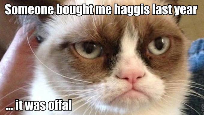 Grumpy Haggis