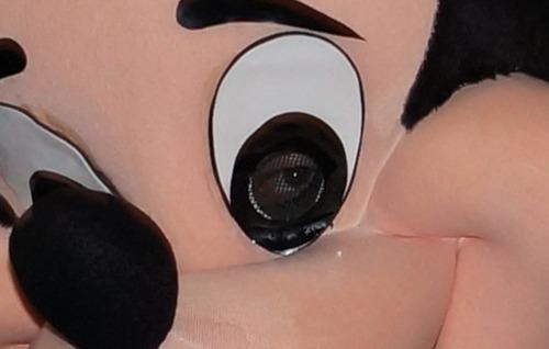 The Man Inside Mickey