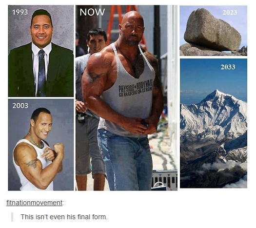 The Rock And His Many Forms