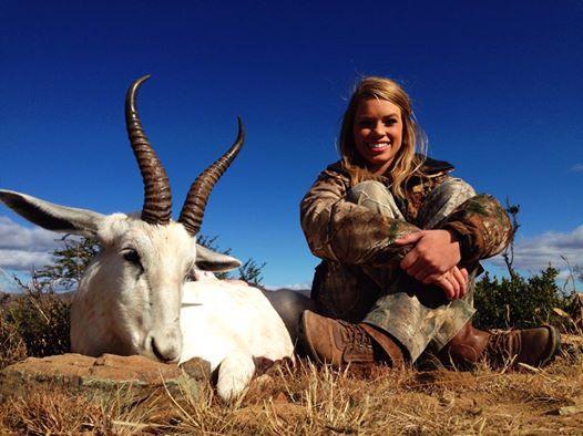 White springbok Kill
