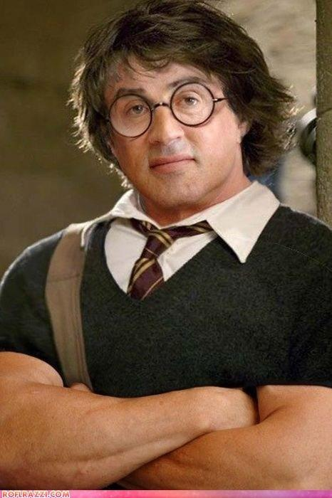 Rocky Potter and the Order of the Tiger