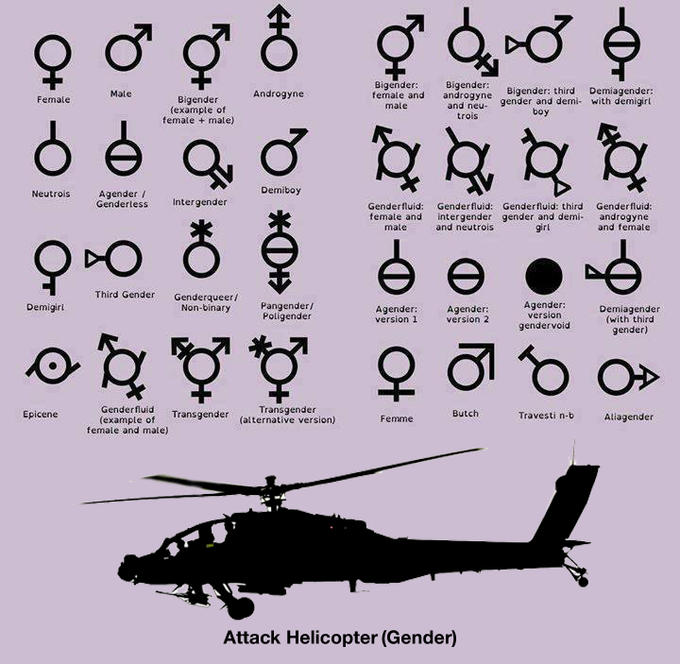 Different kinds of genders