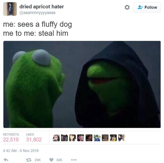 491 evil kermit know your meme
