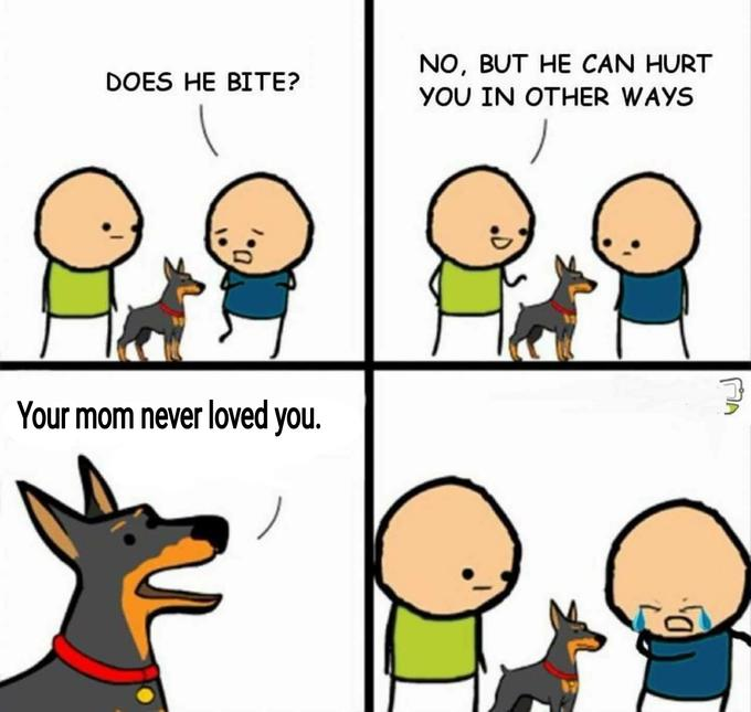 9cd does he bite? know your meme,Does Your Dog Bite Meme