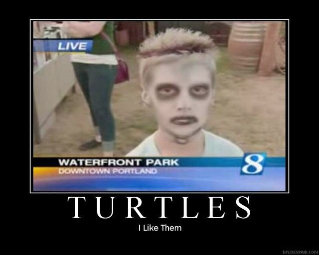 I like turtles kid now