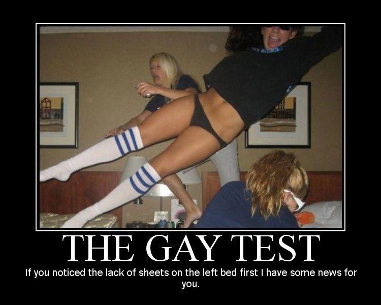 real gay quiz