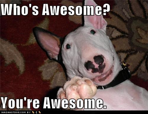 Image 122856 who s awesome you re awesome sos groso sabelo