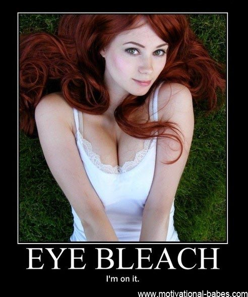 reddit bleach