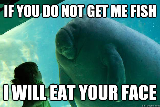 Overlord Manatee  Know Your Meme
