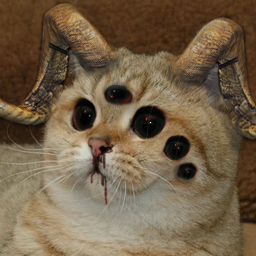 Demon Cat Starecat Grafics Cat Know Your Meme