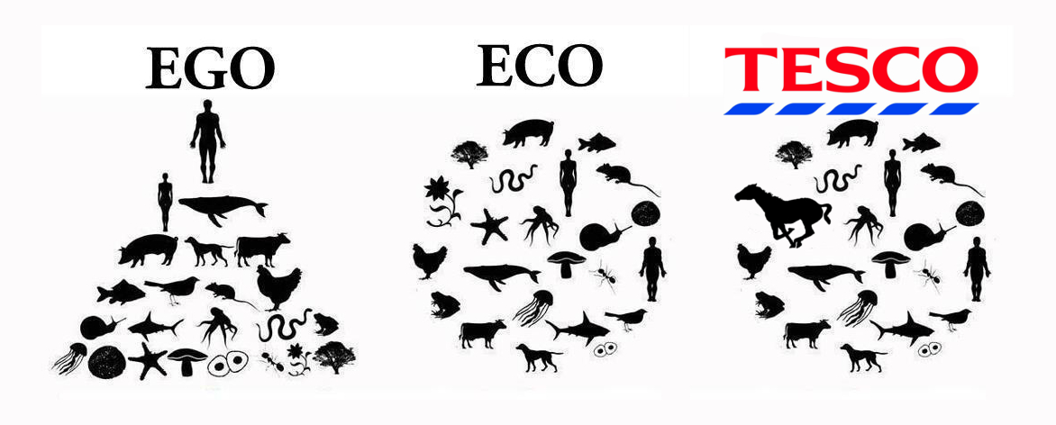 Eco Ego Tesco 2013 Horse Meat Scandal Know Your Meme