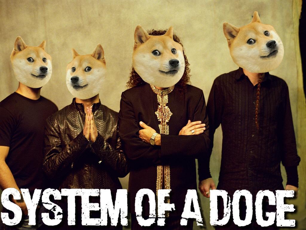 073 concept design home doge shibe wallpaper pictures,Doge Meme Wallpaper