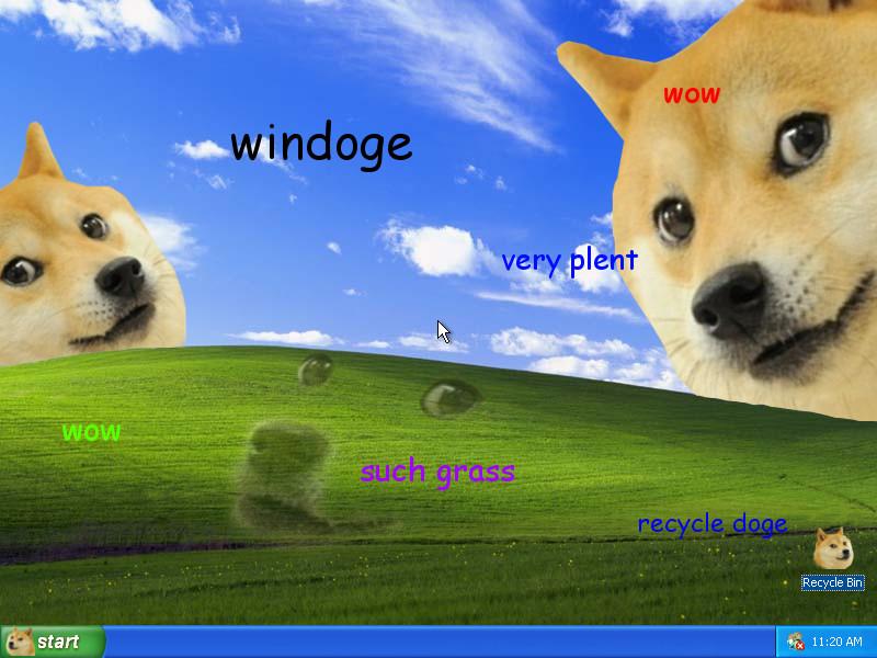 Petit Computer Lost Doge Meme Original