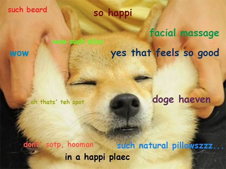 Repost Doge Know Your Meme