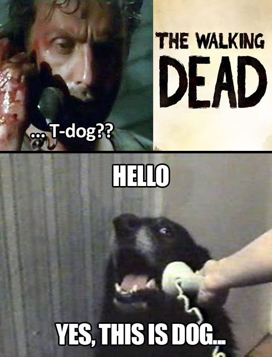 Yes, This is Dog | The Walking Dead | Know Your Meme