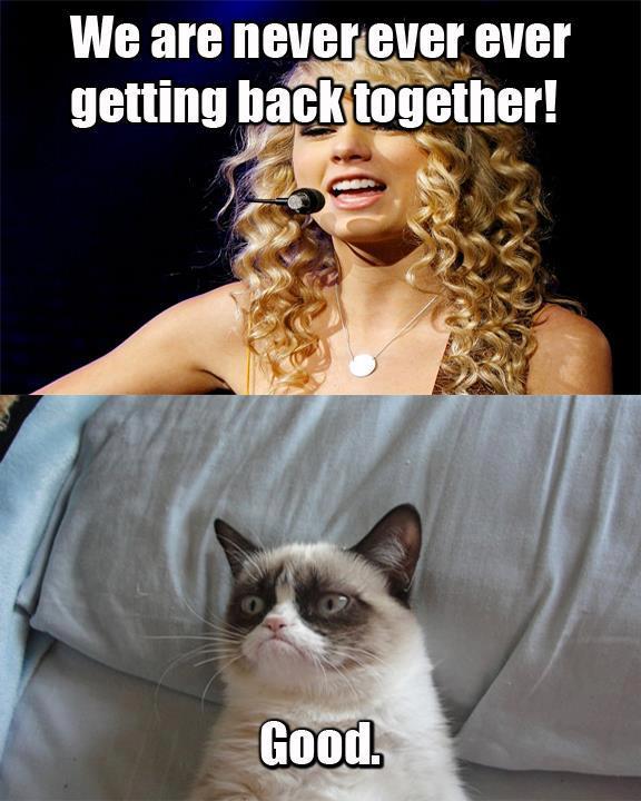 Good   Grumpy Cat   Kn...