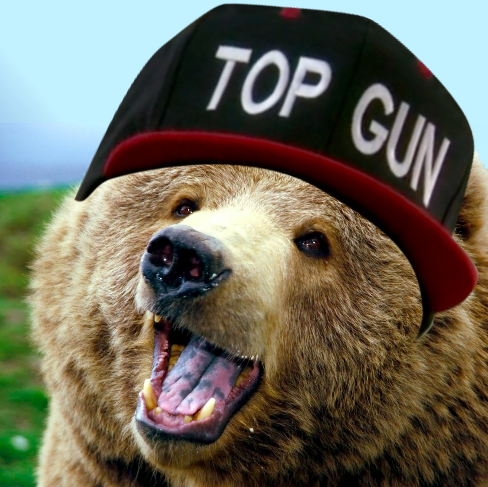 image 644803 top gun hat know your meme. Black Bedroom Furniture Sets. Home Design Ideas
