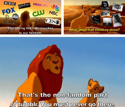 Never Go To The Non Fandom Side The Lion King Know