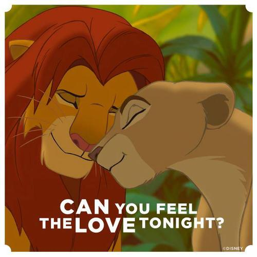 can you feel the love tonigh: