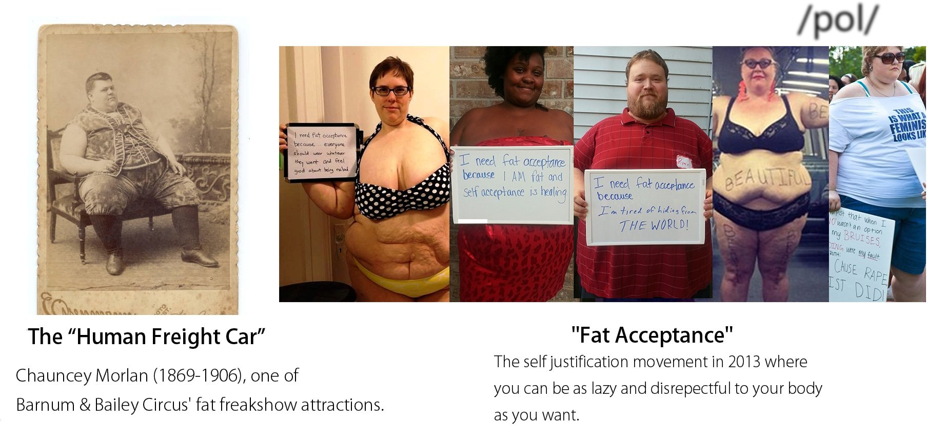 the ridiculing of fat people essay