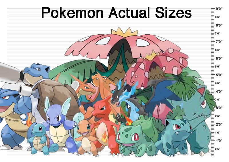 Pokemon SIzes | Pokemon | Know Your Meme Wailmer Evolution Chart
