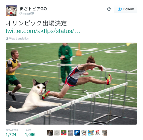 Olympic Hurdles Cat | Stuck Cat | Know Your Meme