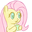 FlutterJuice